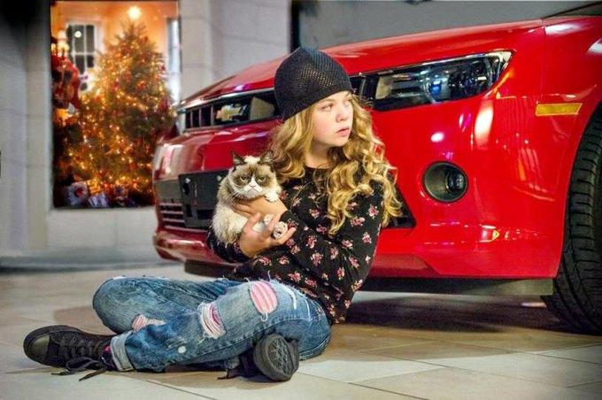 Появилась первая официальная фотография из фильма с Grumpy Cat. Изображение № 1.