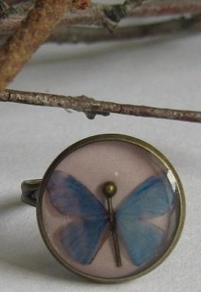 Бабочка и горностай. Изображение № 7.