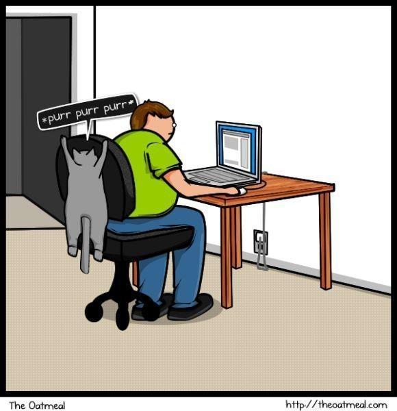 Cat vs. Internet. Изображение № 6.