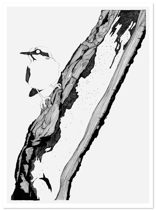 Birds Of Claire. Изображение № 50.