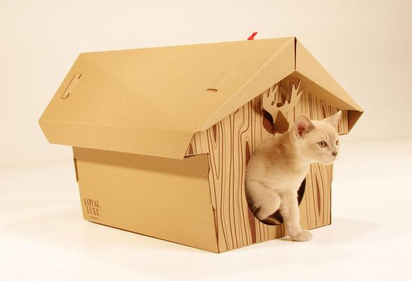 Кошачий домик из картона. Изображение № 5.