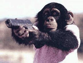 В мире животных: Герои «Мадагаскара» в мемах, рекламе и видеороликах. Изображение № 93.