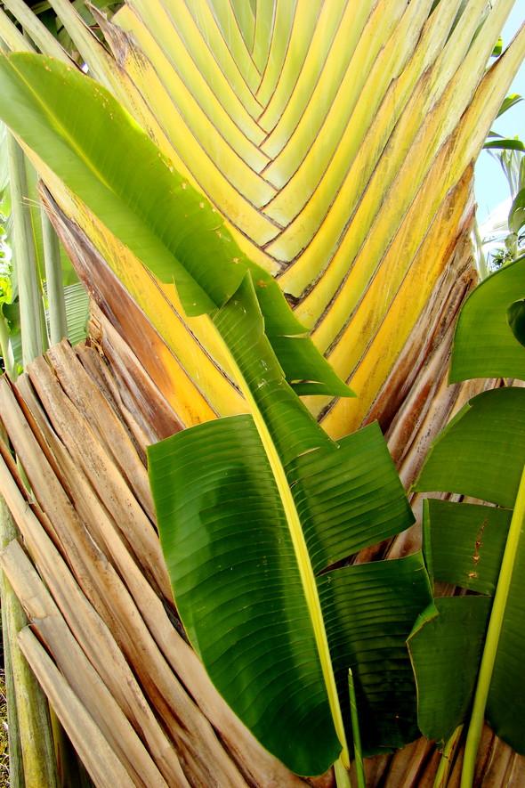 BarbadoS part 3. Изображение № 4.
