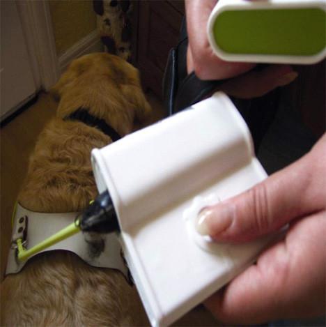 GPSвиляет собакой. Изображение № 4.
