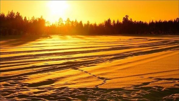Изображение 16. Выходные в шведском лесу.. Изображение № 16.
