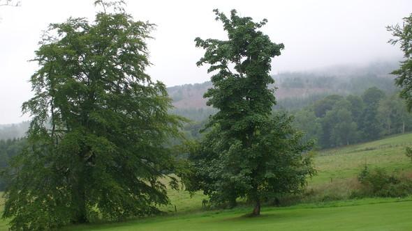 Шотландия – любовь моя!. Изображение № 3.