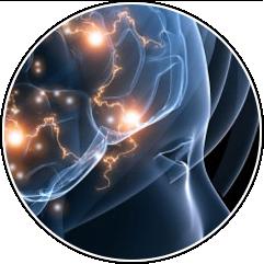 10 примеров биохакинга, которые изменят нашу жизнь. Изображение № 8.