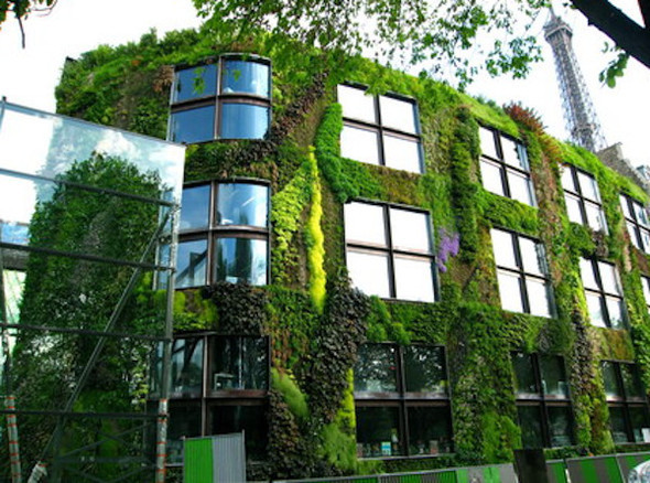 Диалог с природой: вертикальные сады. Изображение № 7.