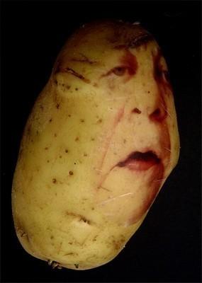 Картофельные портреты. Изображение № 11.