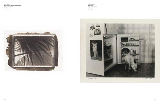 20 фотоальбомов со снимками «Полароид». Изображение №84.
