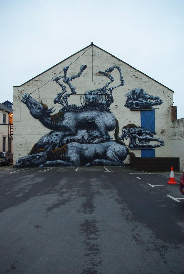 Животный стрит-арт от бельгийского граффитчика ROA. Изображение № 2.