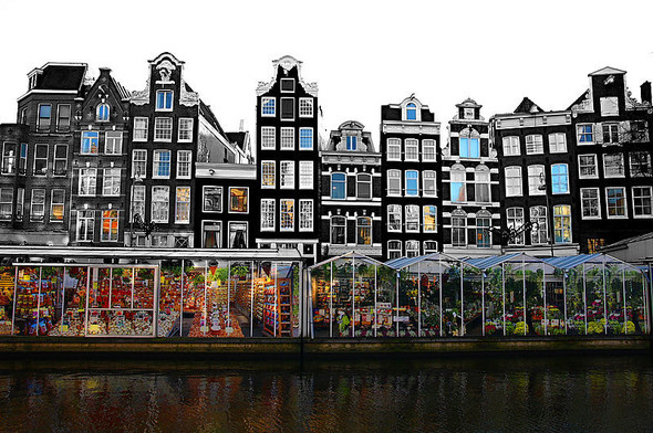 Цветочный рынок в Амстердаме. Изображение № 2.