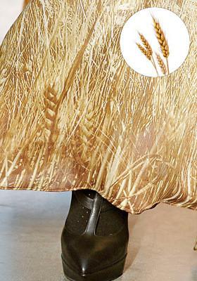 Цветной: 35 принтов из коллекций FW 2011. Изображение № 66.