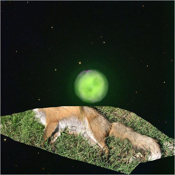 Белок на обочинах сверхновых. Изображение № 6.