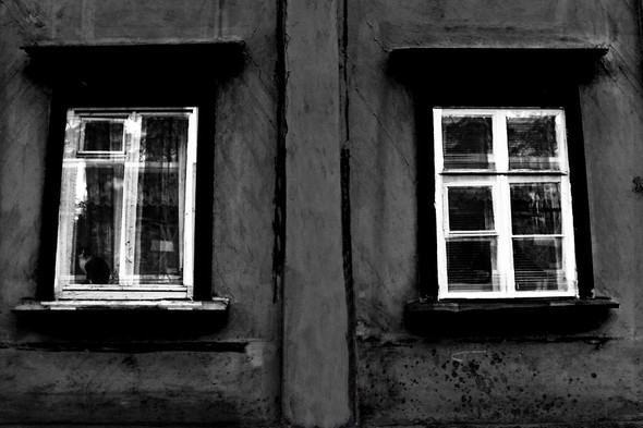 Чёрным по белому. Изображение № 5.
