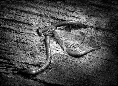 Жизненная история гвоздей. Изображение № 22.