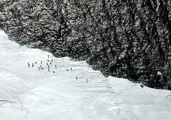 Изображение 3. Антарктида: суровая красота.. Изображение № 3.