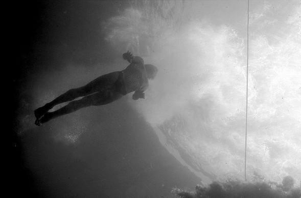 Подводная жизнь глазами фотографа Карлоса Франко. Изображение № 4.