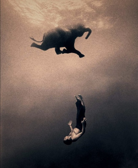 Ashes and Snow(Пепел и снег) Gregory Colbert. Изображение № 18.