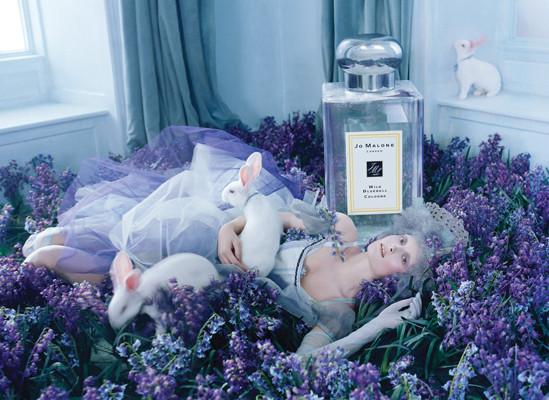 Изображение 4. Кампании: DSquared2, Versace, Yves Saint Laurent и другие.. Изображение № 3.
