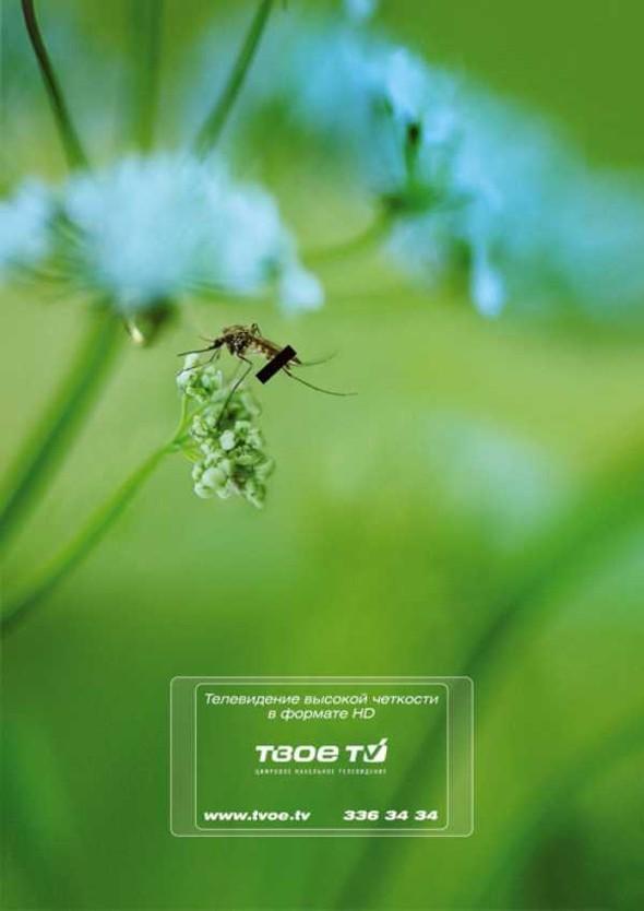 Киевский международный фестиваль рекламы. Победители. Изображение № 7.