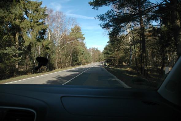 Дороги на острове часто проложены через небольшие леса. Изображение № 15.