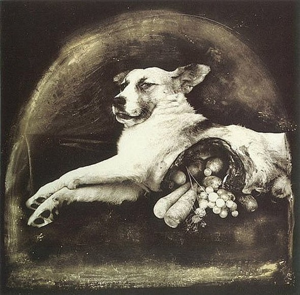 Peter Witkin. Изображение № 24.