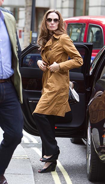 Анджелина Джоли и Брэд Питт приобщаются к культуре. Изображение № 6.
