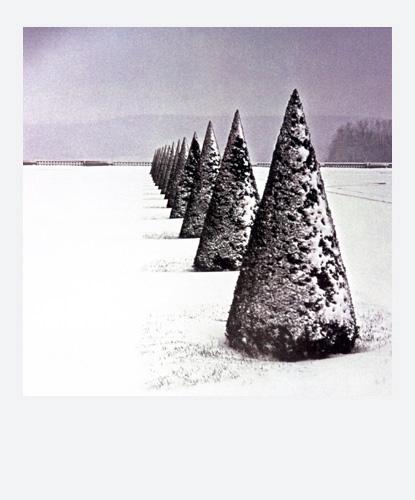 Jean-Frdric Bourdier иего полароидные снимки. Изображение № 19.