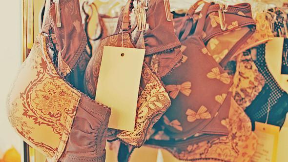"Bakcstage бренда ""Rose&Petal"" AW-2012. Изображение № 2."