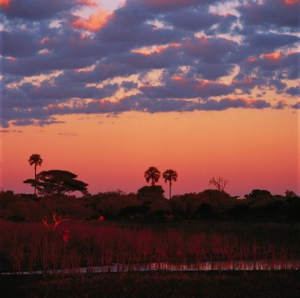 Ботсвана. Изображение № 5.