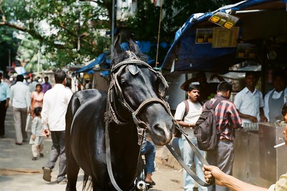 Mumbai. Random. Изображение № 3.