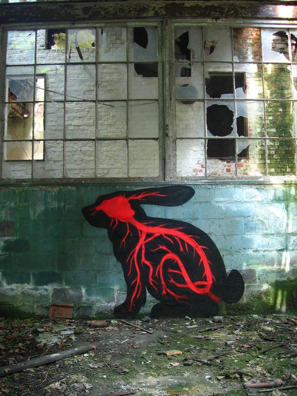 Животный стрит-арт от бельгийского граффитчика ROA. Изображение № 17.