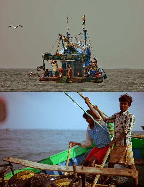 Shrimp boat MFR 646 DF GOA - Non stop. Изображение № 31.