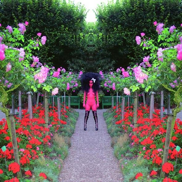 Съемка в стиле киберпанк: Незваный гость в райском саду. Изображение № 1.