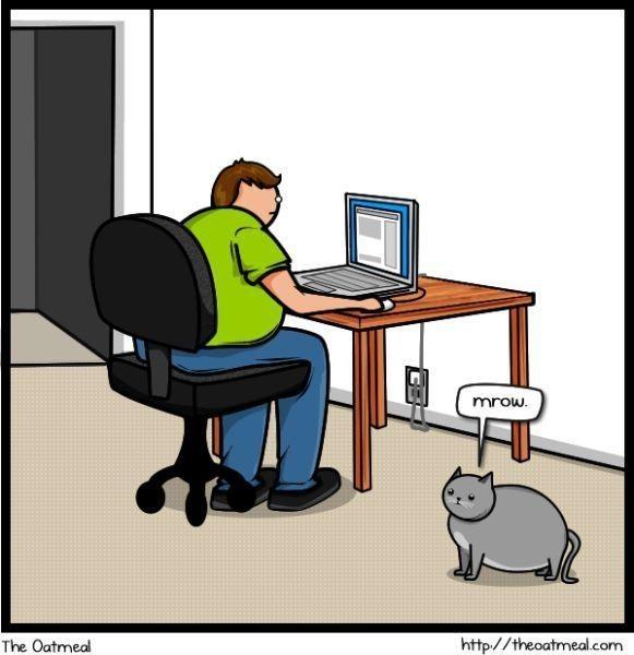 Cat vs. Internet. Изображение № 2.