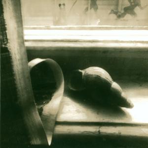 Изображение 12. PINHOLE (Шувал-Сергеев).. Изображение № 11.
