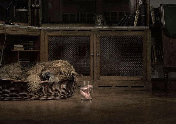 Marc Paeps — бельгийский рекламный фотограф. Изображение № 46.
