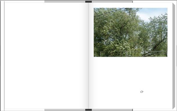 Digital-книга с фотографиями Алексея. Изображение № 38.