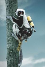 В мире животных: Герои «Мадагаскара» в мемах, рекламе и видеороликах. Изображение № 80.