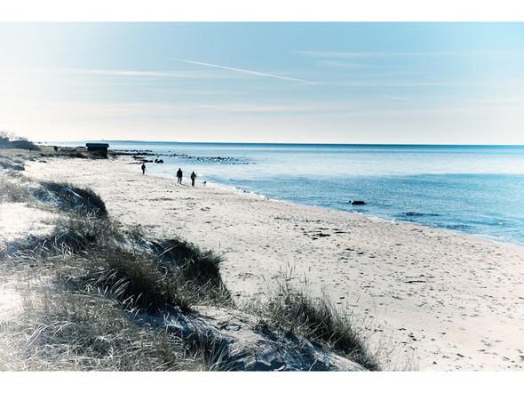 Пляж Тофта. Изображение № 79.