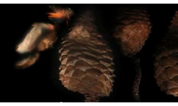 Кадр из ролика Wonderwood . Изображение № 26.