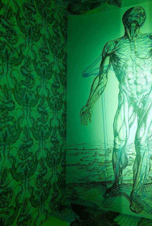 Сумашедший дом или RGB-обои. Изображение № 4.