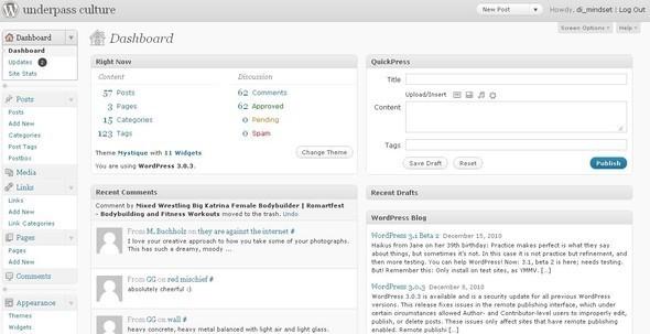 """Как я """"рожал"""" фотоблог в Wordpress. Изображение № 4."""