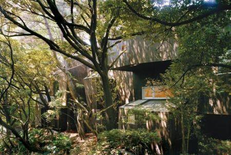 «Танцующие деревья» вцентре Токио. Изображение № 2.