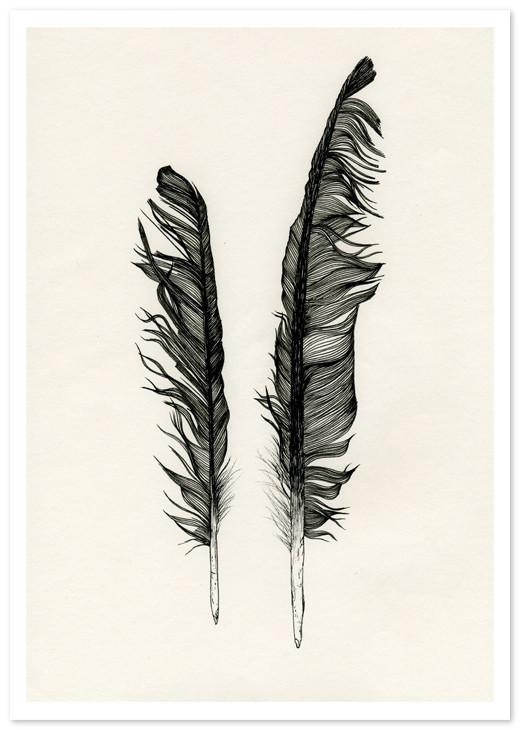 Birds Of Claire. Изображение № 19.