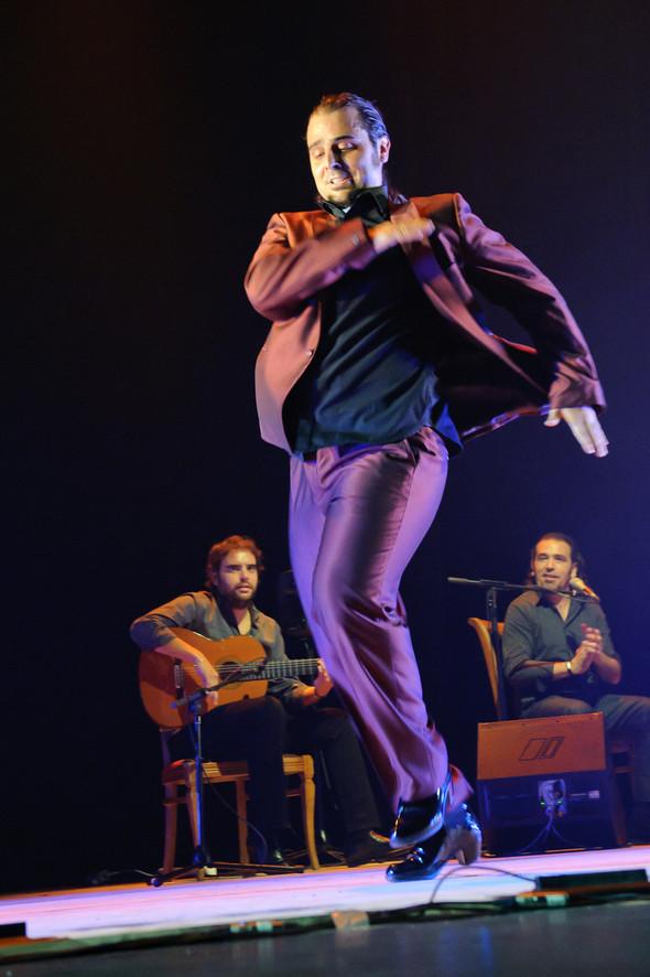 1-й Российский фестиваль фламенко. Изображение № 30.