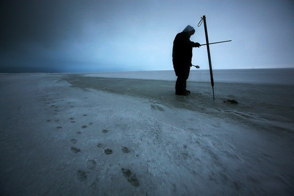 Изображение 47. Damon Winter.. Изображение № 47.