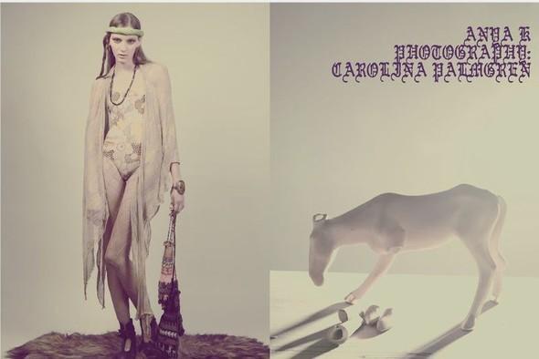 Carolin Palmgren. Изображение № 9.