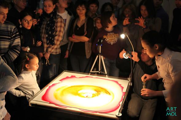 Фестиваль Научное искусство. Изображение № 50.